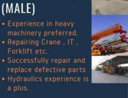 Job vacancy available for Diesel Mechanic